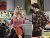 The-Big-Bang-Theory-9x14-1 (1)