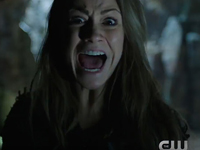 the 100_4