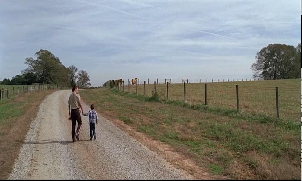 The Walking Dead: -30% d'ascolti vorrà dire qualcosa, no? - Recensione episodio 8.14