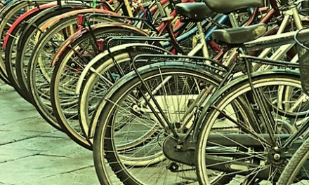 Guerra ai furti, in Valdera arriva l'Anagrafe delle biciclette