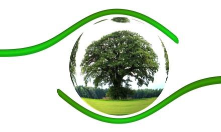 Ambiente: nasce il Sistema Nazionale per la Protezione Ambientale