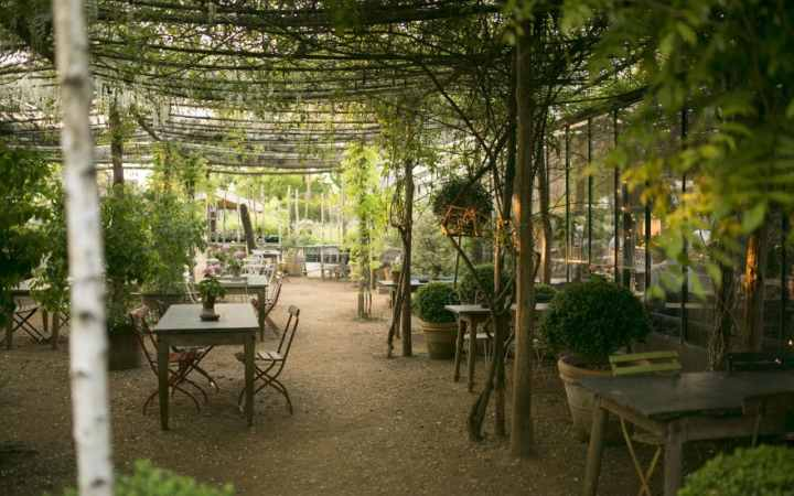the uk's best garden centres and nurseries | the telegraph