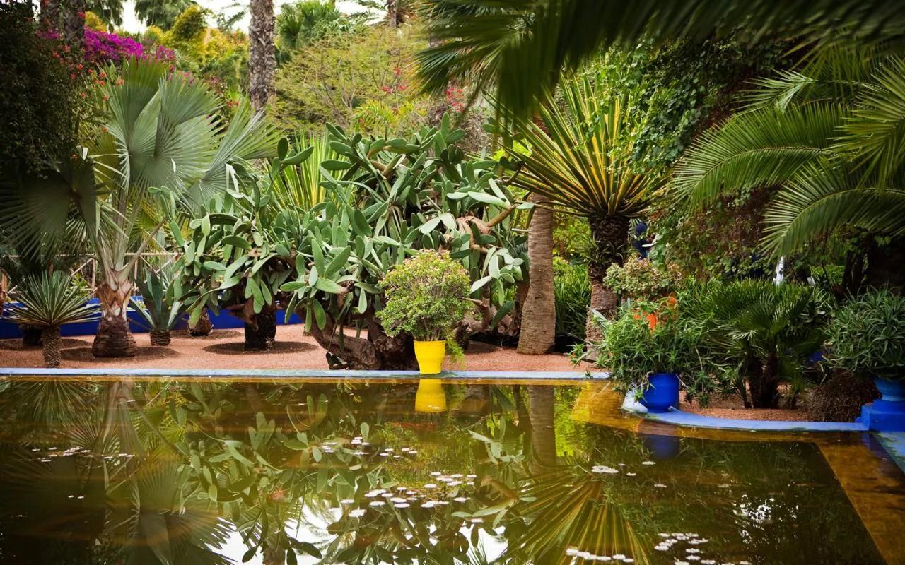 Best Garden Design App Uk