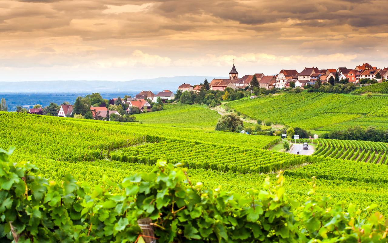The Top 10 Food And Drink Holidays In France