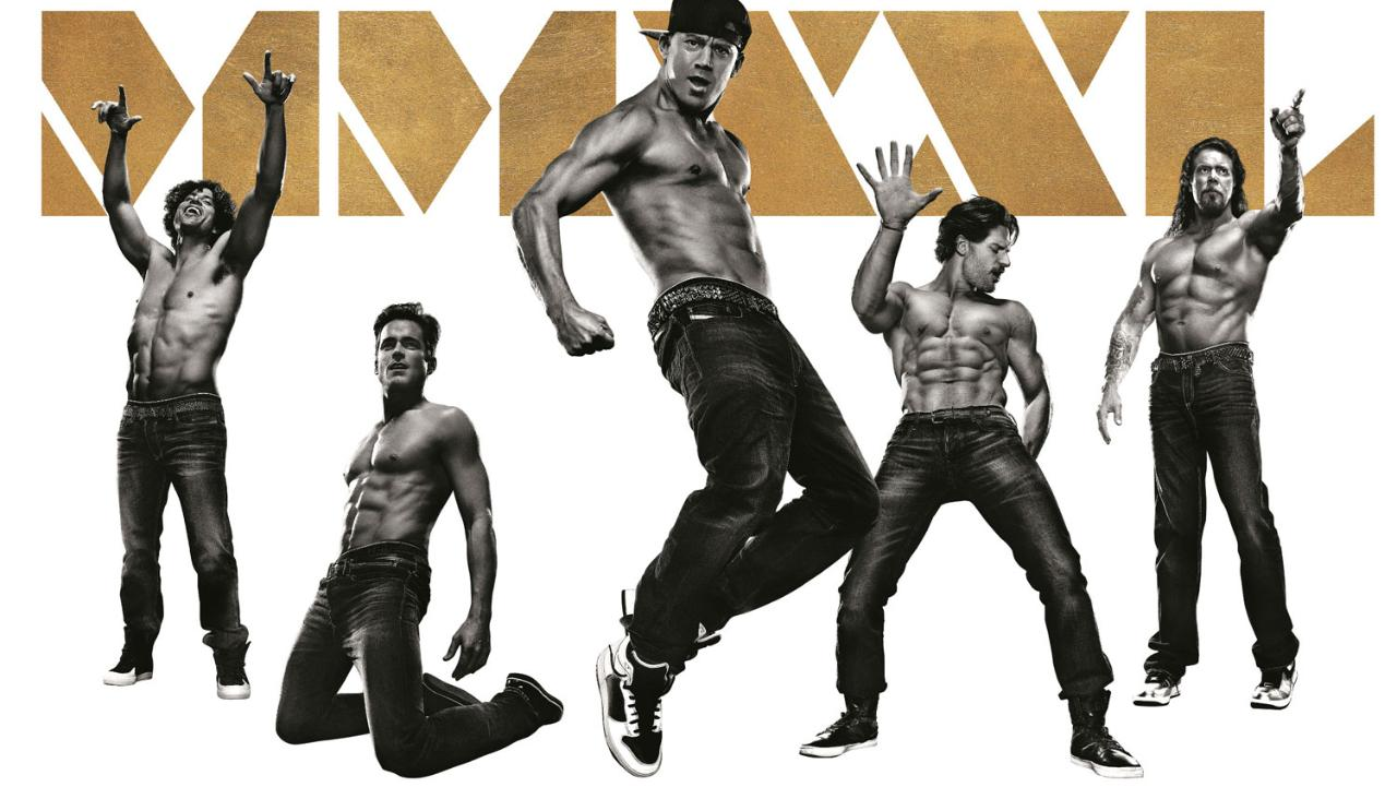 Image result for magic mike xxl poster