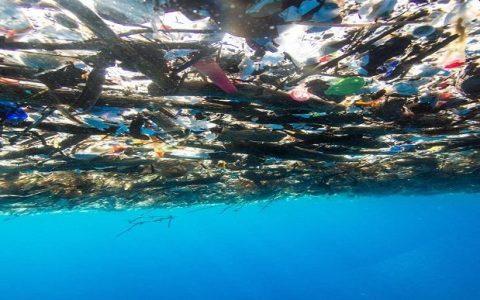 rubbishCaribbean Sea