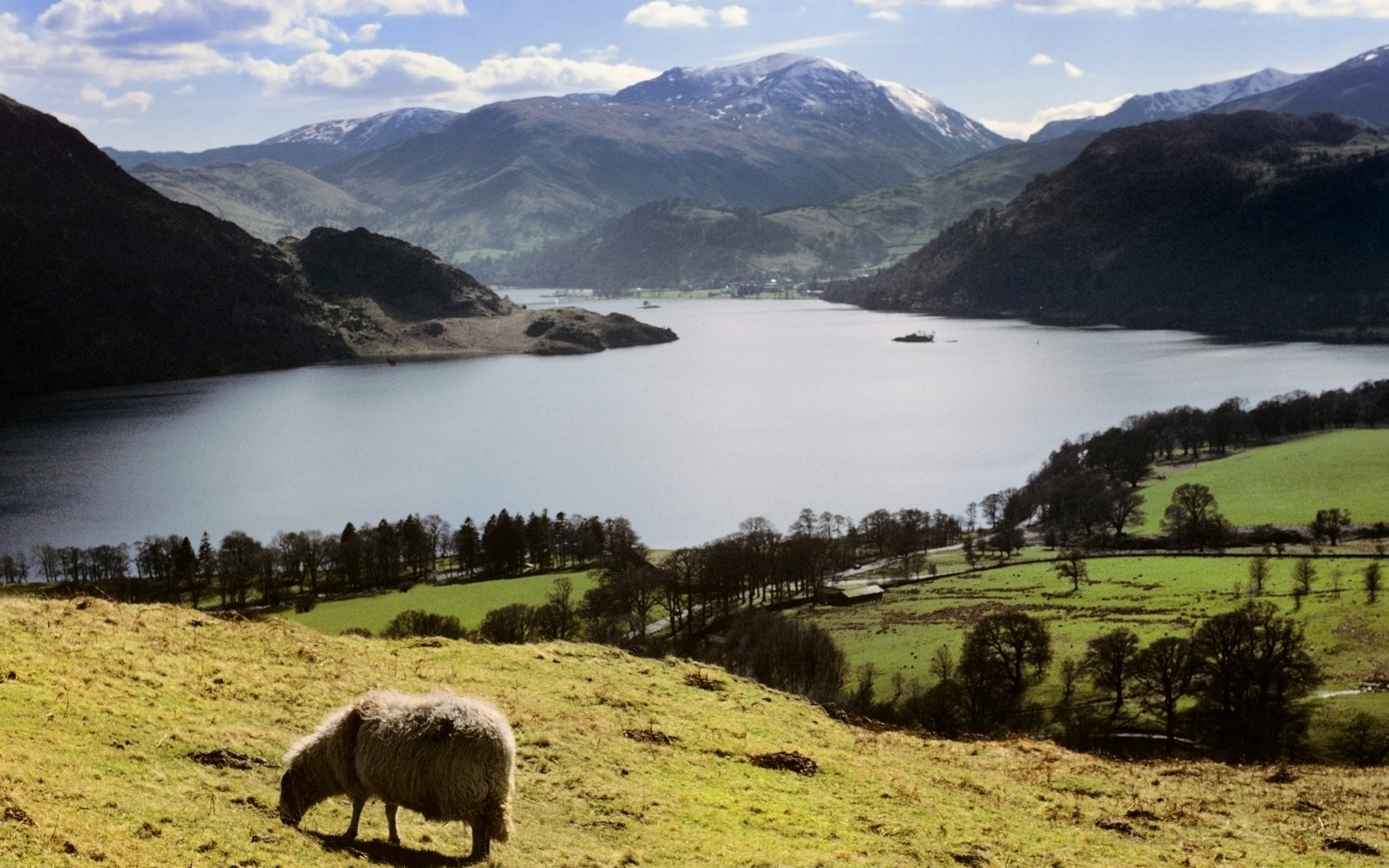 The incident happened near Ullswater in the Lake District
