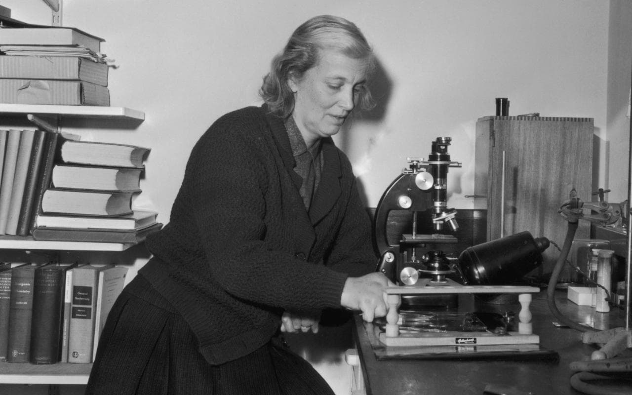 What Did Dorothy Hodgkin Contribute To Chemistry
