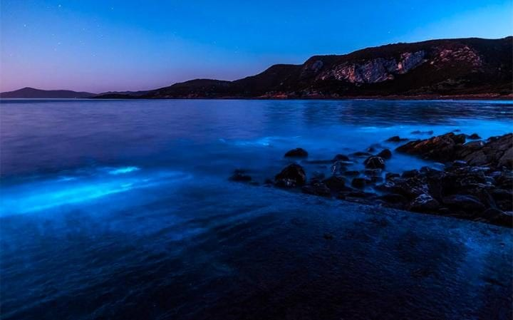 Leanne Marshall captured bioluminescence near Rocky Cape National Park, Tasmania