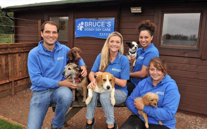 Doggy daycare owner shares how to create a pet care company