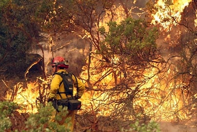 A California Department of Forestry firefighter monitors a backfire