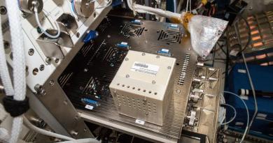 pronta missione SpaceX, si studia virus nello spazio**