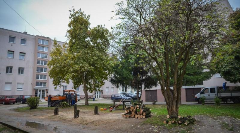 Indul a Váci utcai tömbbelső felújításának harmadik üteme. Fotó: Szaffenauer Ferenc/Paksi Hírnök