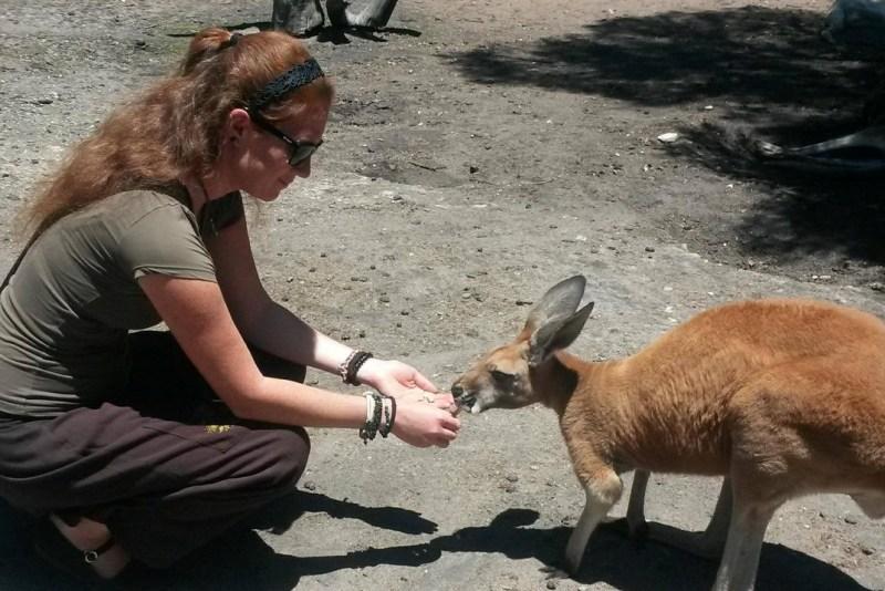 A kenguruval való találkozás sem maradt el. Fotó: magánarchívum