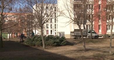 Elérkezett a téli kertészeti munkák időszaka