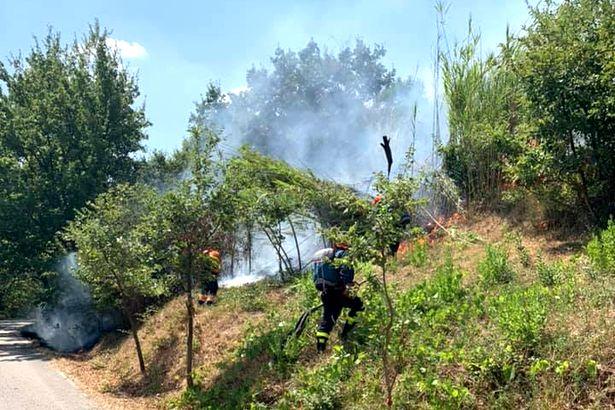 Casal di Principe. Incendiava rifiuti su terreno agricolo privato: arrestato ghanese 30enne