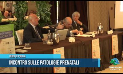 Incontro sulle patologie prenatali