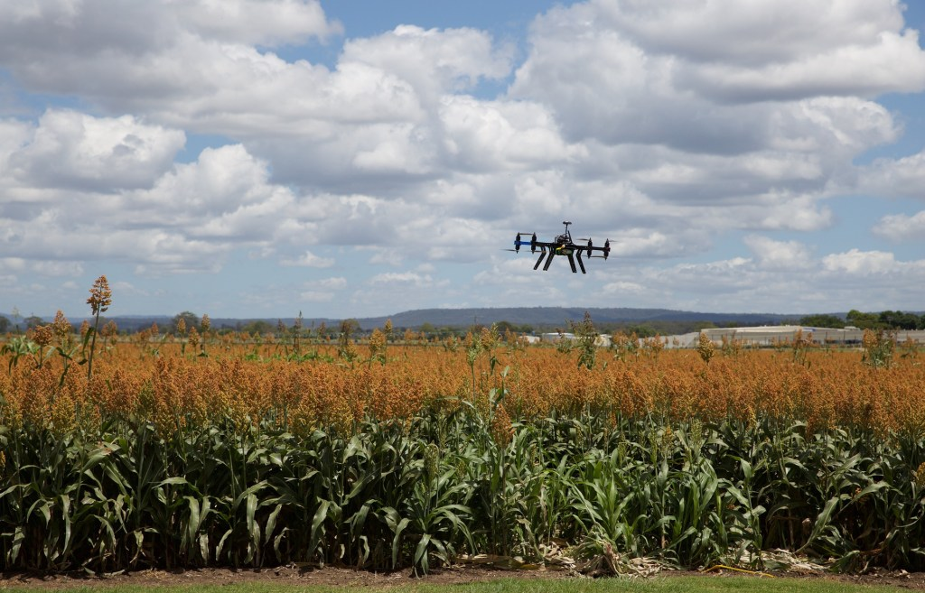drone-agricultura-iot