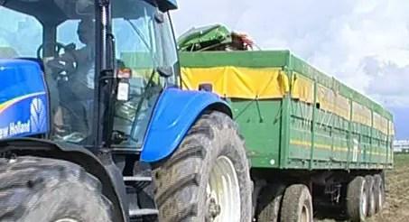 Legalità e appalti in agricoltura: i rischi – VIDEO
