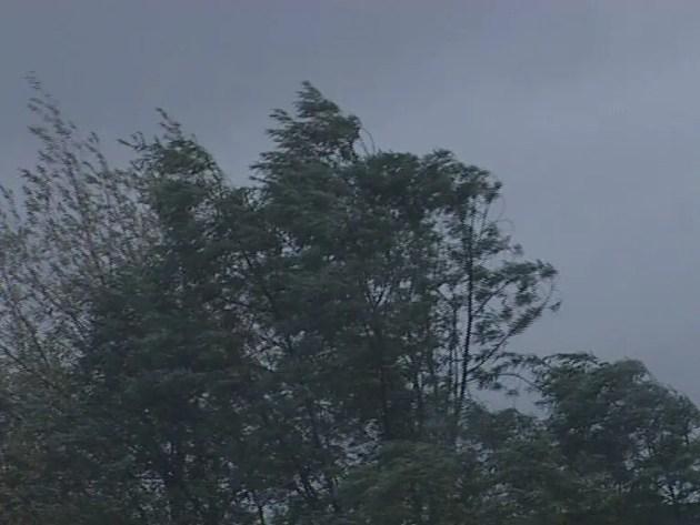 Maltempo, pioggia e vento: allerta arancione