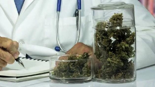 Cannabis terapeutica: ultimo appello – VIDEO