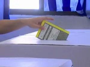 elezioni schede elettorali voto