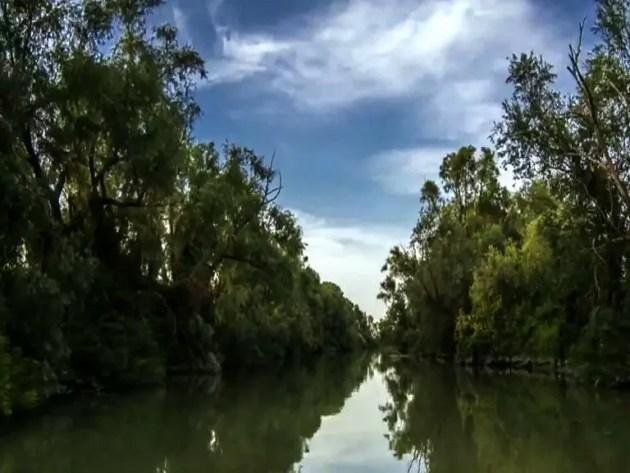 """Nasce all'Aleotti il nuovo diploma in """"Gestione delle acque e risanamento ambientale"""". Presentazione in Sala Estense – INT. Bianchi."""