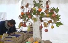 Giornate Provinciali Ringraziamento, i lavoratori della terra custodi della diversità – VIDEO