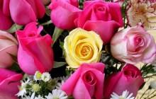 """San Valentino, Coldiretti: """"Il 34% regala fiori, ma 4 su 10 nulla"""""""