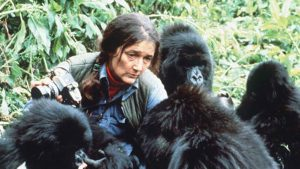 Dian Fossey etológus