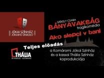 Székely Csaba: BÁNYAVAKSÁG (Teljes előadás)