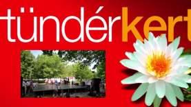 A Csallóközi néptáncegyüttes és a Pósfa zenekar a Tündérkertben (1)