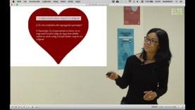 A pillangó, a gyöngy a szív: magyar fiatalok külföldi egyetemeken