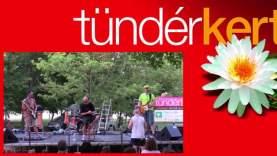 Bada Bing koncert Tündérkertben (1)
