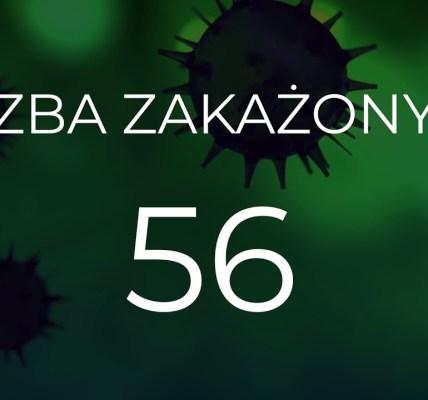 RAPORT DZIENNY #koronawirus 29/03/2020 woj. warm.-maz.