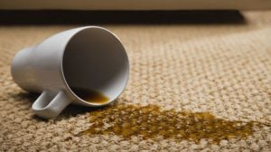 Telford and Shropshire Carpet Cleaning