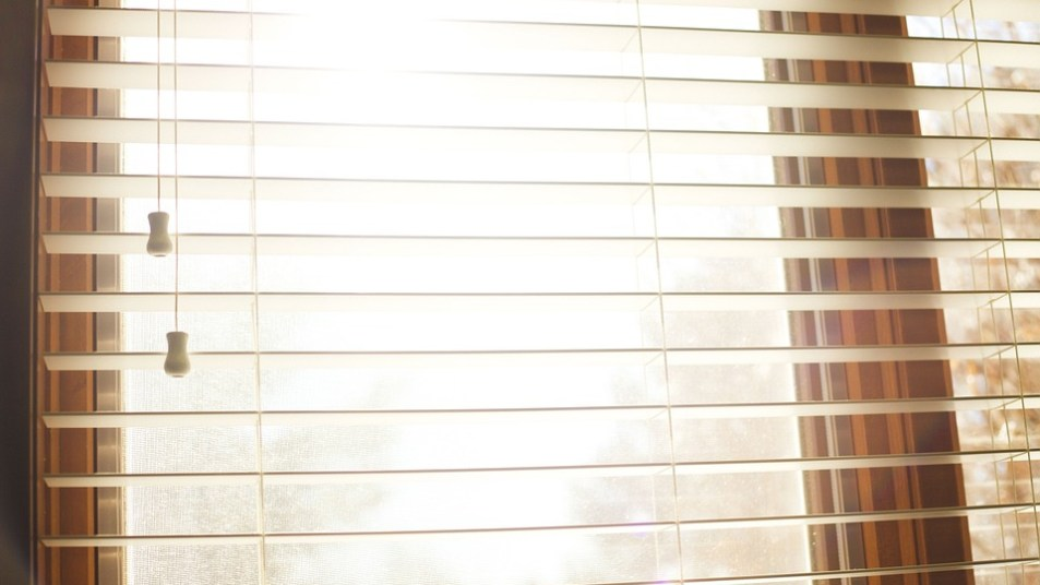 fdgdgfdgfdgfdgfdg - Window Blinds Online