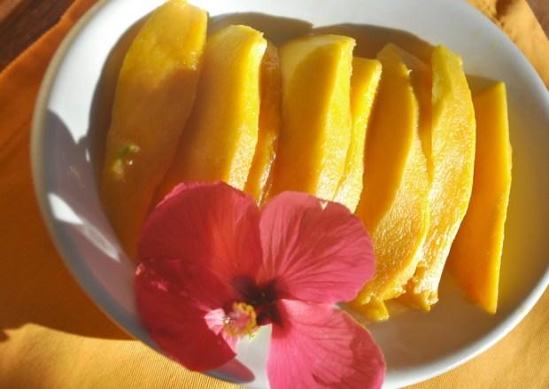 Mmmhh - Mango © muehleib