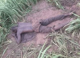 Graphic Photo: Staff of Delta State University alegedly killed by Fulani herdsmen on his farm in Abraka