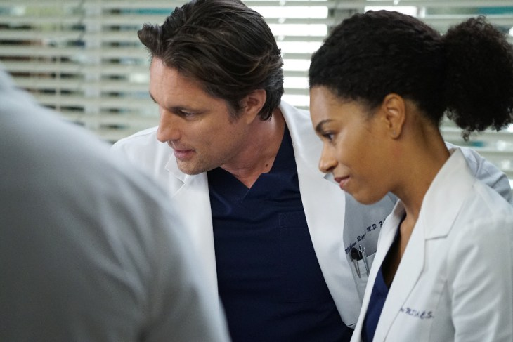 Grey\'s Anatomy Review: Back Where You Belong (Season 13 Episode 14 ...