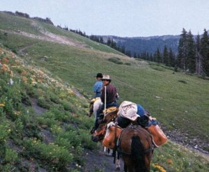 Telluride Magaazine's Editor-in-Chief riding horseback around Wilson Massif.