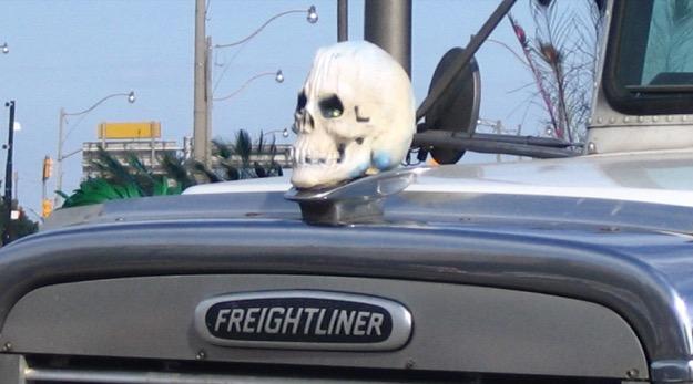 Skull hood ornament