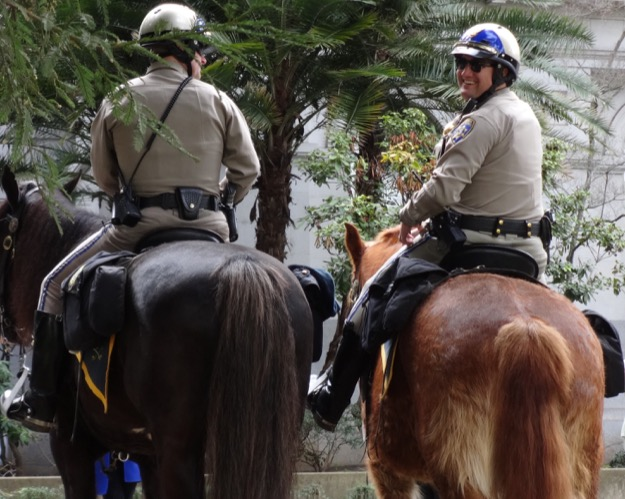 Chp horses capitol 3feb2016