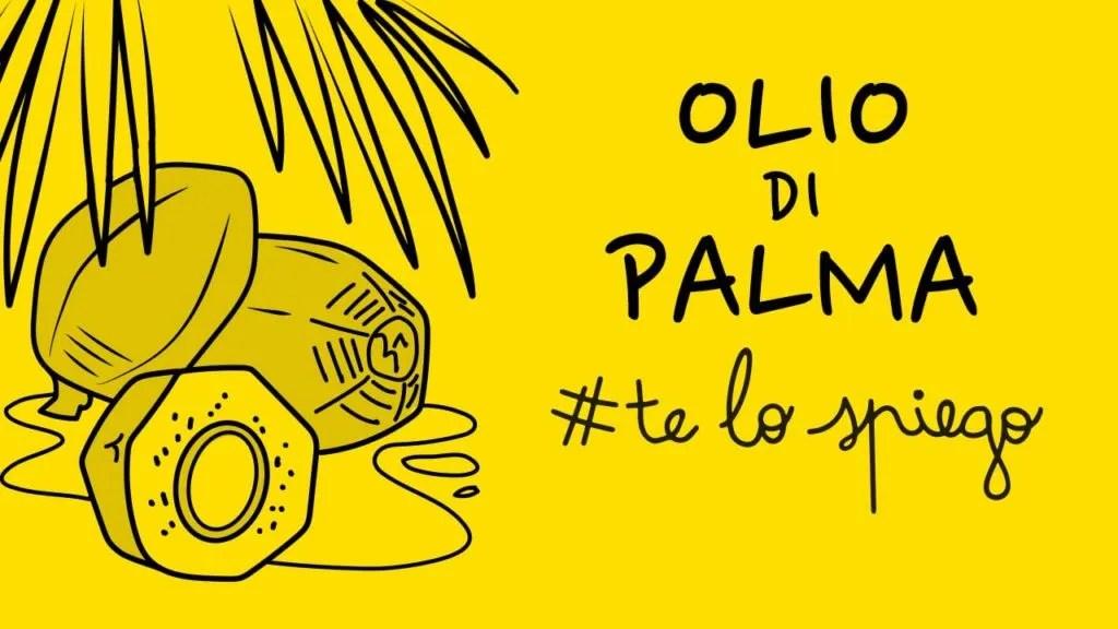 CHE COS'È L'OLIO DI PALMA? #TELOSPIEGO!