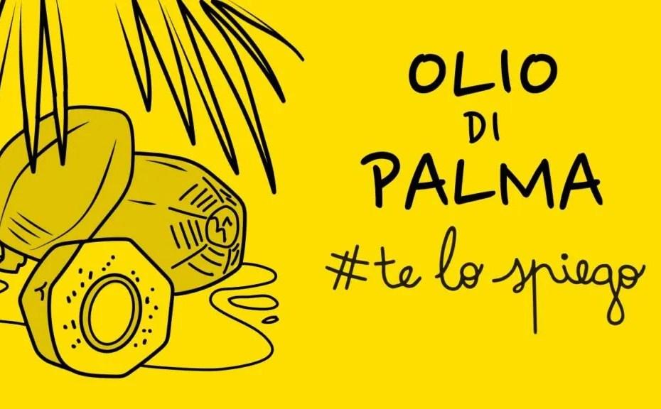 che cos'è l'olio di palma, l'olio di palma fa male sì o no thumbnail telospiego