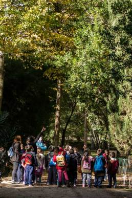Visitas a los jardines de Aranjuez para colegios (primaria) - 04