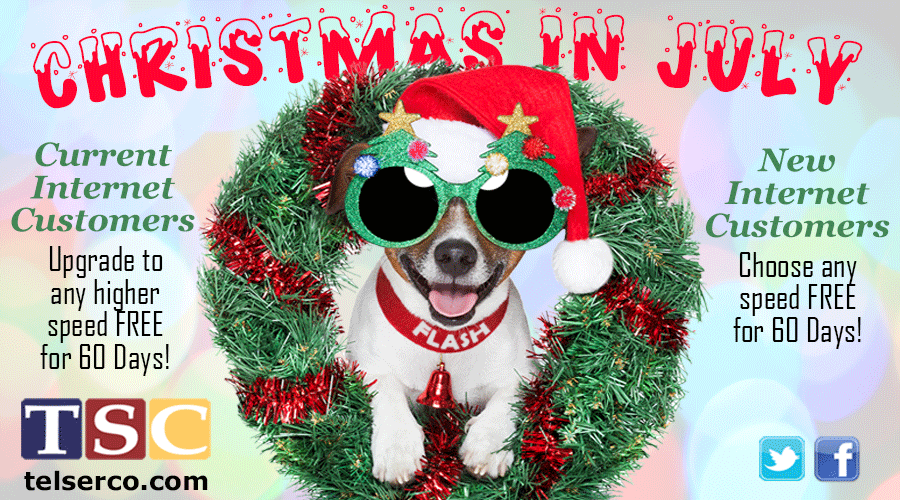 Christmas in July Horizontal Ad