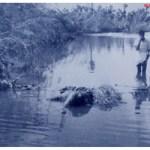 1977 నవంబరు 19….ఆ రోజు …