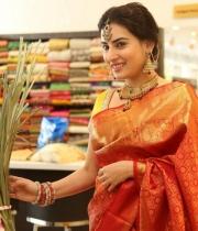 archana-beautiful-saree-photos15