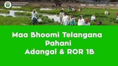 Photo of Check telangana land Records in Maa Bhoomi